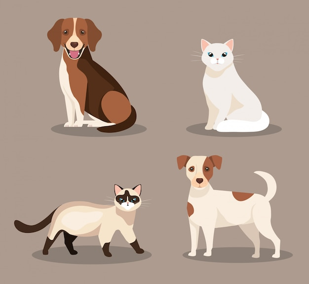 Группа милых кошек и собак