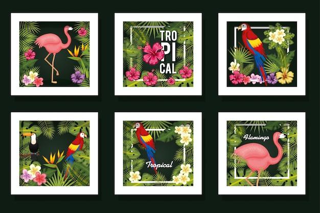 葉っぱと動物の熱帯の束カード