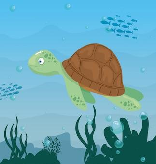 Морская черепаха в океане, обитатель морского мира, милое подводное существо, морская среда обитания