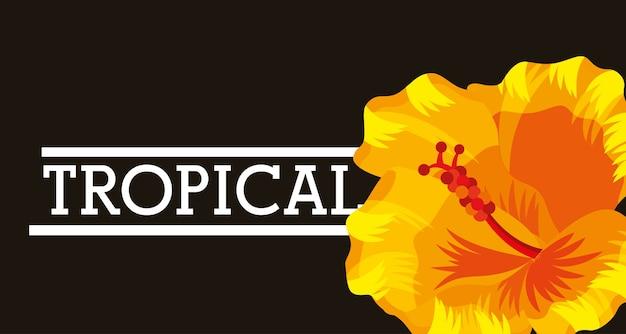Тропический цветок листья карты