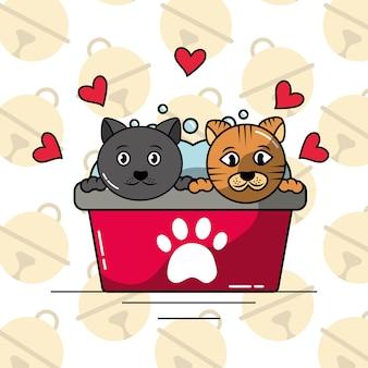ペットの猫はバスタブを洗うクリーンケア愛