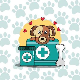ペットの犬の場合の薬のケアへの獣医の医療