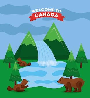 カナダの森林の滝湖のクマとビーバー