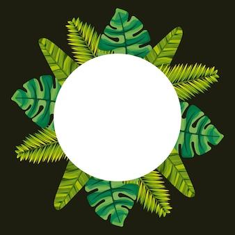 熱帯の葉の椰子のモンスターフレームの装飾