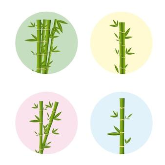 竹は白い背景の上にスティック