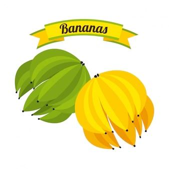 白い背景ベクトルのイラスト以上の果物のデザイン