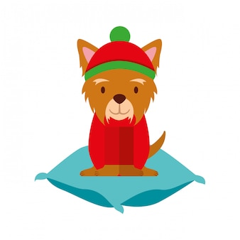 犬のメリークリスマスカード