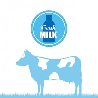 ミルクデザイン