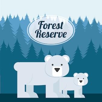 森林のコンセプト
