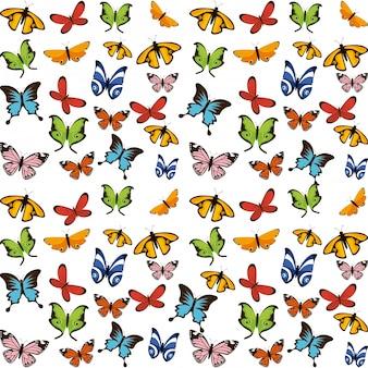 飛んでいる蝶