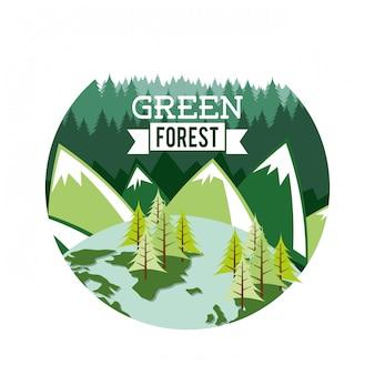 白い背景ベクトルイラスト上の森林設計