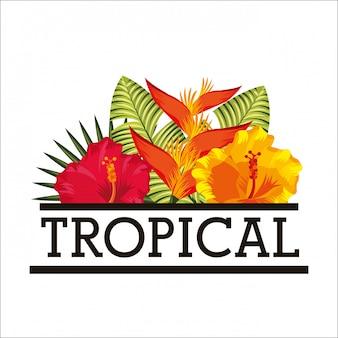 Тропический цветок оставляет открытку