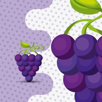 ドットの背景に新鮮なフルーツ天然房ブドウ