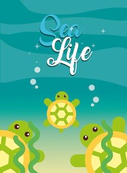 海の生活漫画