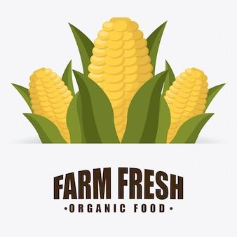 Органическая еда