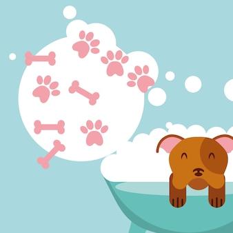 犬はバブルを泡の骨をグルーミンググルーミング愛ペット