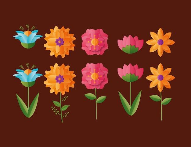 花の自然のセット