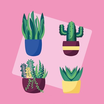 装飾的な植物のフラットな画像デザイン