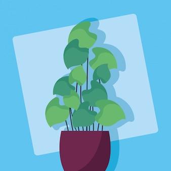 Декоративное растение с плоским изображением