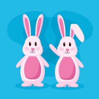 かわいいウサギのカップル