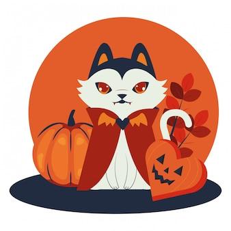 Хеллоуинский кот, замаскированный под дракулу