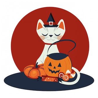 魔女キャラクターを装ったハロウィン猫