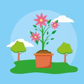 Цветы в горшке в саду
