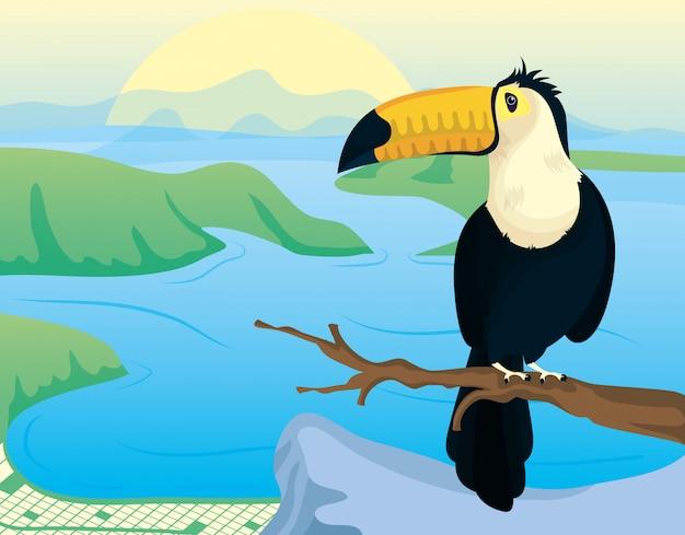 オオハシと風景とブラジルのカーニバルイラスト