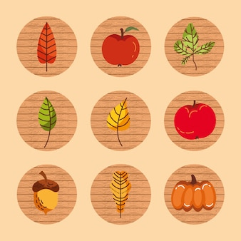 Пучок осеннего сезона фруктов и листьев