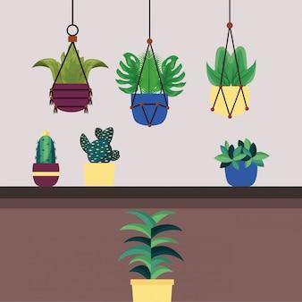 鉢ベクトル内の隔離された観葉植物