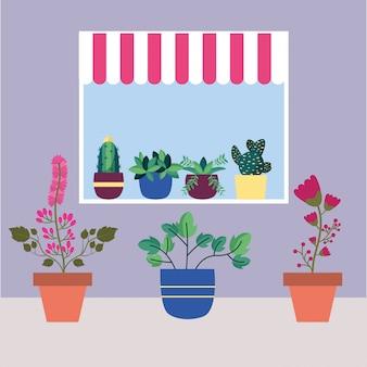 Изолированные комнатные растения в горшках вектор