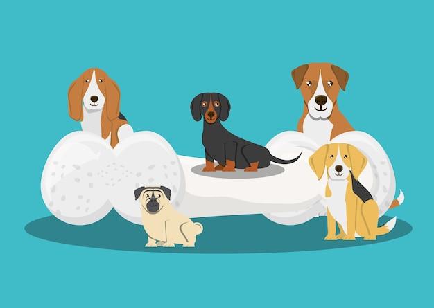 異なる品種の犬と骨