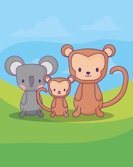Милые обезьяны и коала