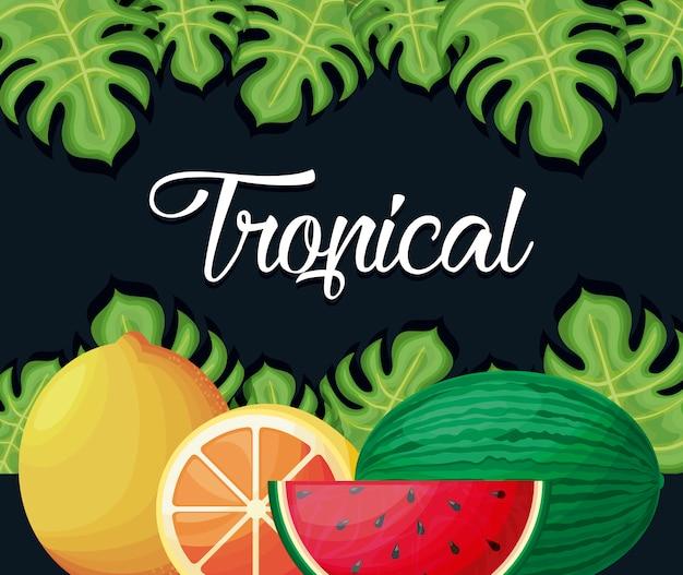 Иллюстрация тропических фруктов и листьев