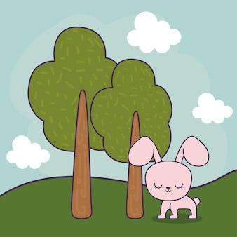 風景の中のかわいいウサギの動物