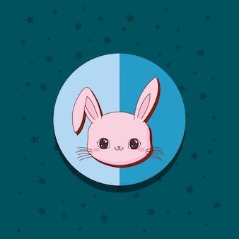 かわいい動物カード