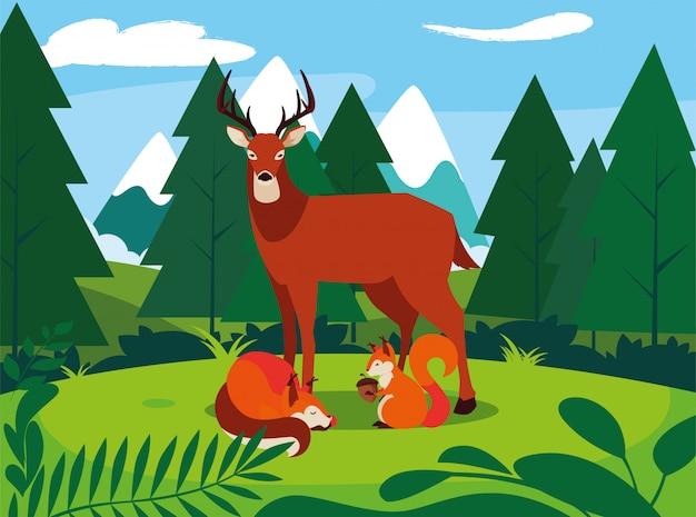 鹿キツネとリスの幸せな秋のシーズン