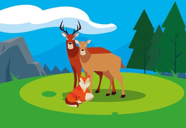 キツネと鹿の幸せな秋のシーズン