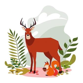 鹿とリスの幸せな秋のシーズン