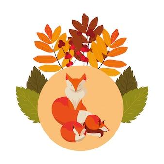 キツネ哺乳類幸せな秋のシーズンフラット