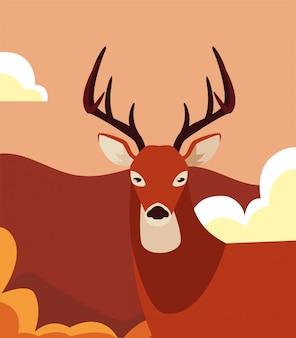 自然の風景の中の鹿動物