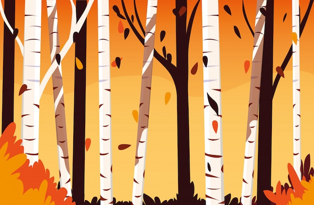 木と美しい秋の風景シーン