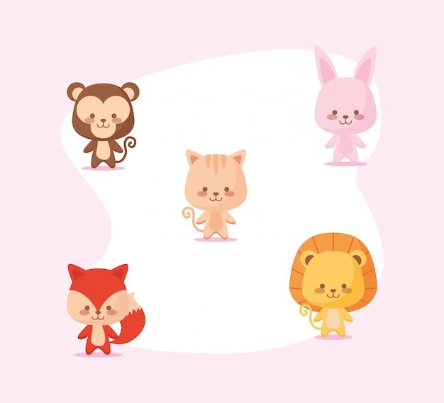 Милый мультфильм обезьяна, кролик, кот, лев и лиса