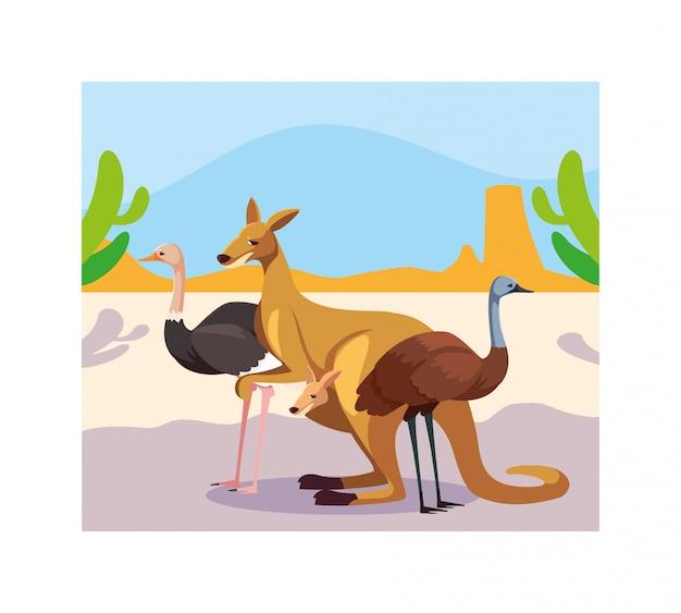 オーストラリアの風景の中の動物とカード