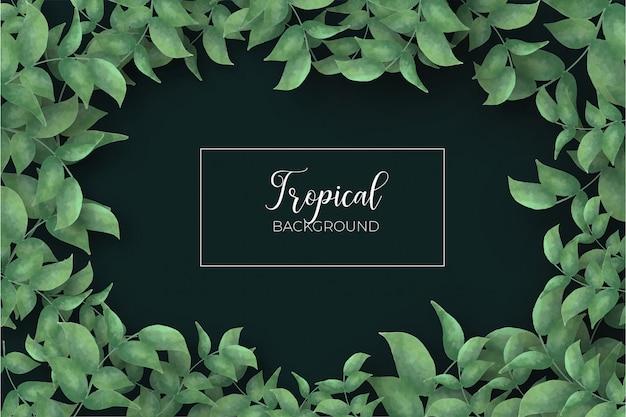 熱帯の葉のフレームの背景