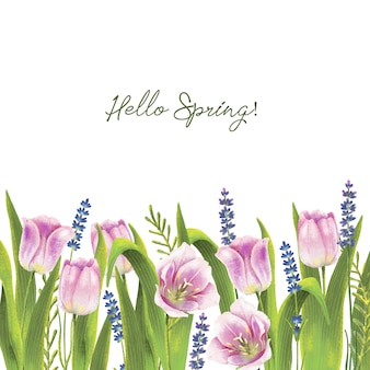 春のチューリップと手描きの水彩画の境界線