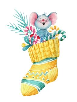 Акварельные рождественские иллюстрации мыши в носке с украшениями