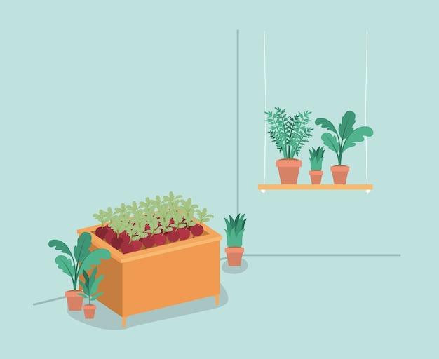 棚の植物の飼育場