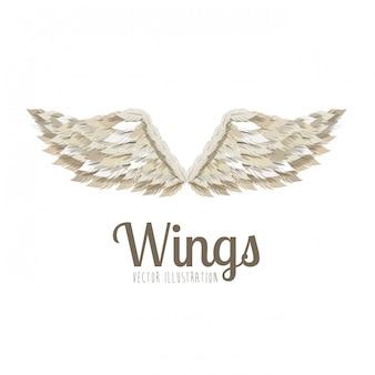 Дизайн крыльев