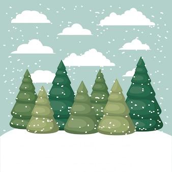 松の景色と雪景色